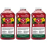 Perky-Pet 238 32 fl oz Red Hummingbird Nectar Concentrate - 3 Pack