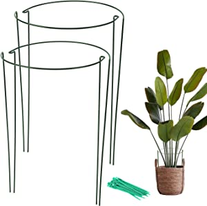 """Garden Plant Support Stake 4 Pack,Tomato Cages for Garden,Metal Plant Supports Ring for Potted Plants,Tomato,Vine(10"""" Wide x 15.8"""" High)"""