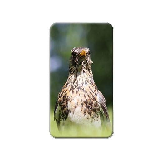 Fieldfare Candidiasis pájaro Metal solapa sombrero camiseta bolso ...