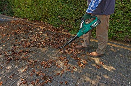 Bosch ALB 36 LI Cordless Leaf Blower with 36 V 2.0 Ah Lithium-Ion Battery & Advanced Hedge Cut, 36 V, 540 mm blade…