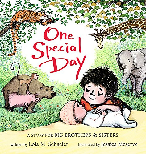 One Special Day: A Story for Big Brothers and Sisters -