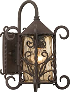 "Casa Seville 13 1/4"" High Iron Scroll Outdoor Wall Light"
