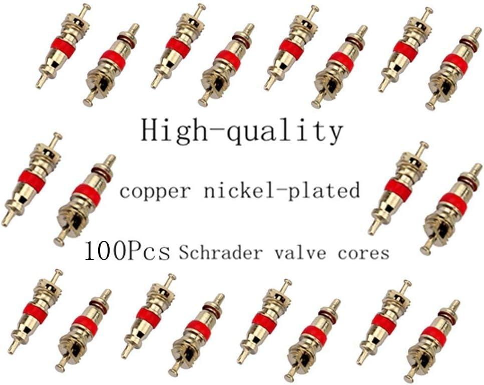Doppelkopf-Ventilkern-Entferner Reifenreparatur-Werkzeug-Set Naliovker Ventilkern-Entferner mit 100 St/ück Auto-//LKW-Ersatz-Reifenventil-Schaft-Kern