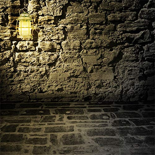 LFEEY 10x10ft Grunge Stone Wall Background for Photography Lighting Lamp Dark Scary Wall Corner Halloween Backdrop Adults Kids Party Events Photo Shoot Video Drape Portrait Photo Studio Prop