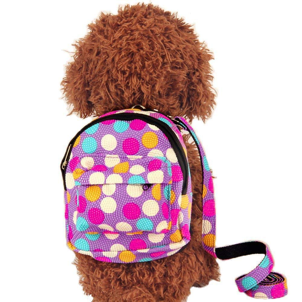 Multicolor Dots Backpack Design Outdoor Rucksack Zipper Daypack Fits to Small Medium Dogs. Porlik Dog Backpack Harness with Leash Set