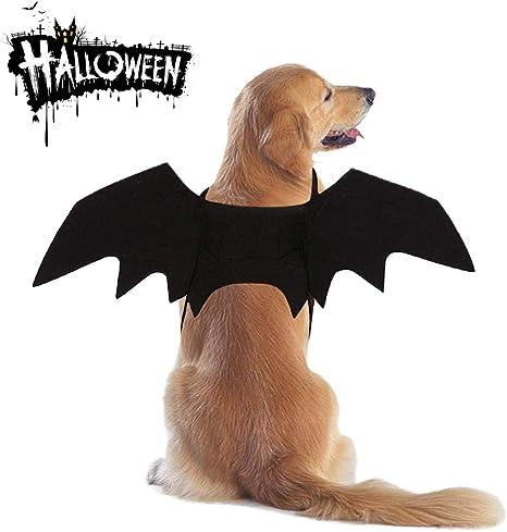 MMNM Disfraz De Halloween para Perros Gatos, Alas De Murciélago ...