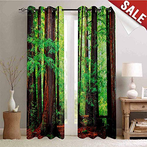 - Hengshu Woodland Thermal Insulating Blackout Curtain Redwood Trees Northwest Rain Forest Tropical Scenic Wild Nature Lush Branch Blackout Draperies for Bedroom W108 x L96 Inch Green Redwood