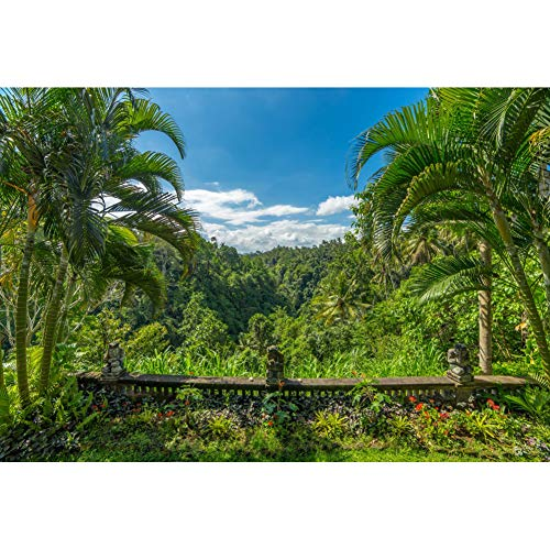 Laeacco Tropical Forest Background 7x5ft Summer Party Photography Backdrop Forest Park Sunny Blue Sky Clouds Green Palm Trees Plant Flowers Holiday Tour Photo Portrait Shoot Decor Bali Wallpaper