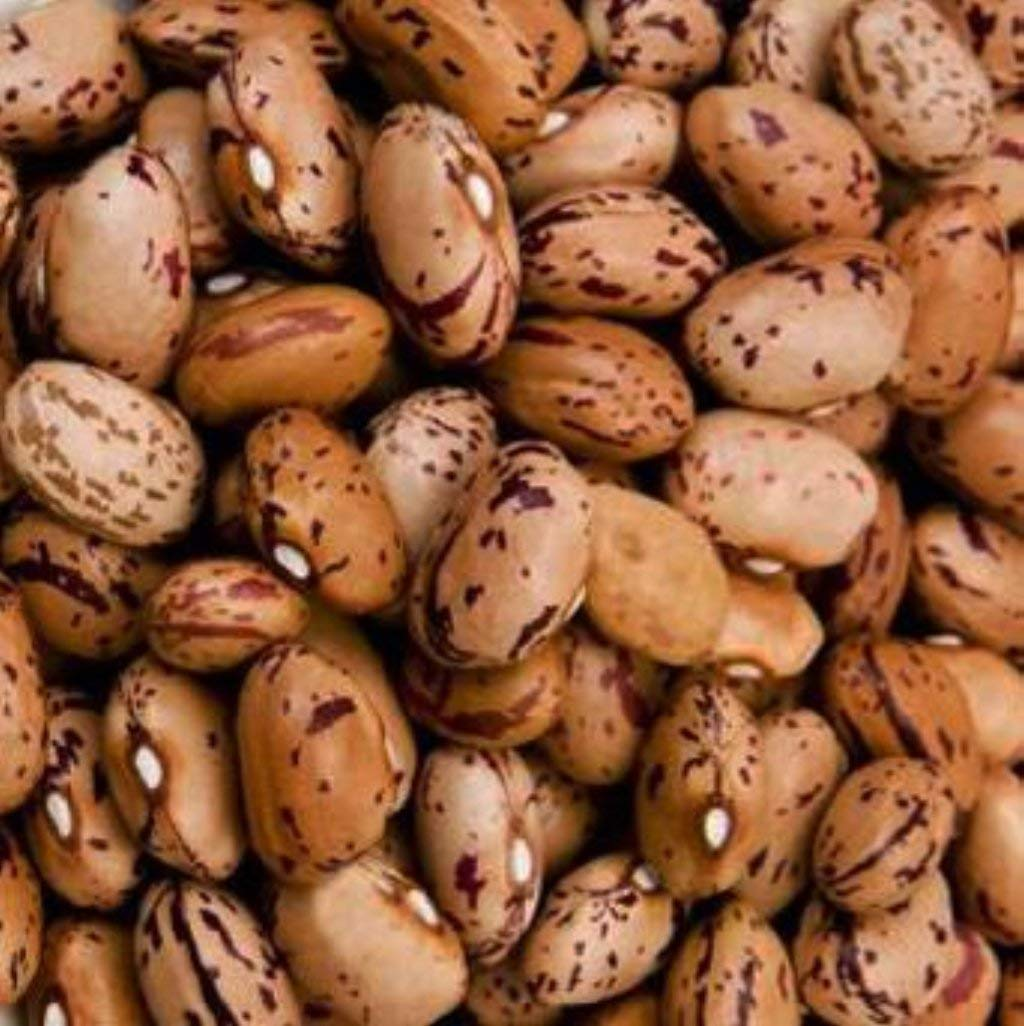 YANKEETRADERS Tongues of Fire Beans 2 Lbs - In Resealable Bag