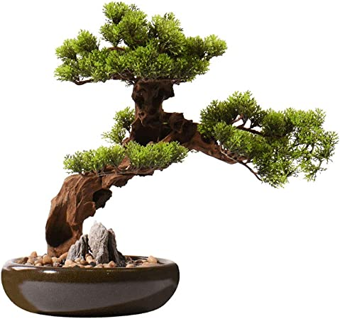 Amazon Com Artificial Bonsai Tree Welcome Bonsai Chinese Artificial Cedar Desktop Simulation Green Value Hotel Villa Artificial Potted Living Room Porch Zen Simulation Tree Artificial Bonsai Faux Potted Plant Home Kitchen