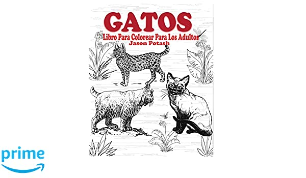 Gatos Libro Para Colorear Para Los Adultos: Amazon.es: Jason Potash: Libros