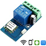WHDTS WiFi Momentary Inching Relay Delay Switch Module Low Power Smart Home Remote Control DC 12V Compatible with iOS Andriod 2G/3G/4G Network
