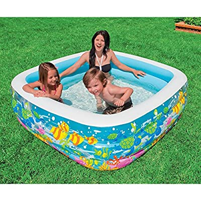 Intex Clearview Aquarium Pool | Computers And Accessories