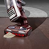 shark duoclean powered lift away speed upright vacuum cinnamon nv803