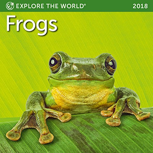 Frogs Mini Wall Calendar 2018
