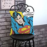17.7 X 17.7 inches Blue Justice League Decorative Pillowcase, Red Superman Throw Pillow Cover Superhero Adventure Movie Cushion Cover Cartoon Themed Square Woven Gift Children, Polyester