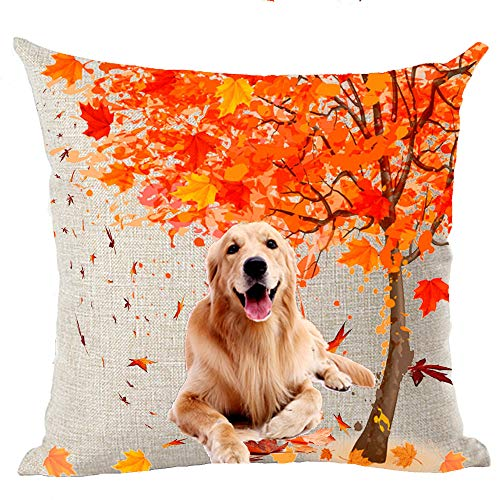 Happy Fall Y'all Autumn Maple Tree Lovely Animal Abstract Adorable Pet Dogs Golden Retriever Dog Cotton Linen Throw Pillow Covers Cushion Cover Decorative Sofa Bedroom Living Room Square 18 Inches