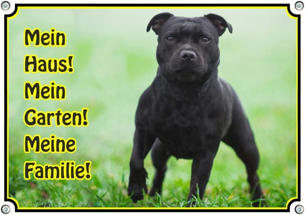Warnschild Hund vor rotem Hintergrund DIN A3 Petsigns Hundeschild mit schwarzem Staffordshire Bullterrier