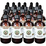Caraway Alcohol-FREE Liquid Extract, Organic Caraway (Carum carvi) Dried Fruit Glycerite 15x4 oz