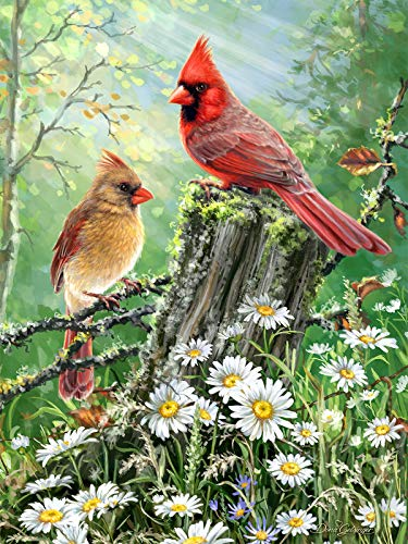 500 Cardinals Piece Puzzle - Springbok Puzzles - Golden Light - 500 Piece Jigsaw Puzzle - Large 23.5