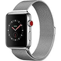 Apple Watch Cellular Stainless Milanese At A Glance