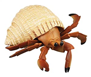Funnuf Ocean Sea Animal Realistic Sea Life Ocean Creatures Figure Durable Waterproof Figurines Toys Gift for Kids, Ages 3 and Up, Hermit Crab