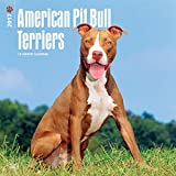 Best Buy American Pit Bull Terriers Wall Calendar Dogs 2017 {jg} Best Holiday Gift Ideas - Great for mom, dad, sister, brother, grandparents, , grandchildren, grandma, gay, lgbtq.