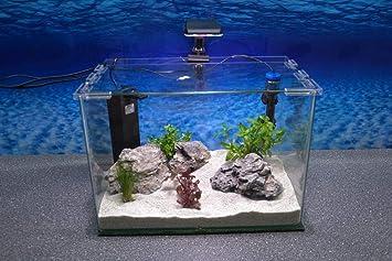 Wave caja Orion 40 Nano Acuario Completo Acuario Mini acuario + Filtro equipo: Amazon.es: Productos para mascotas