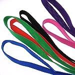 6-Pcs-Bulk-Pack-Slip-Leads-Dog-Pet-Grooming-Kennel-Animal-Control-Shelter-Lead-Leash-New
