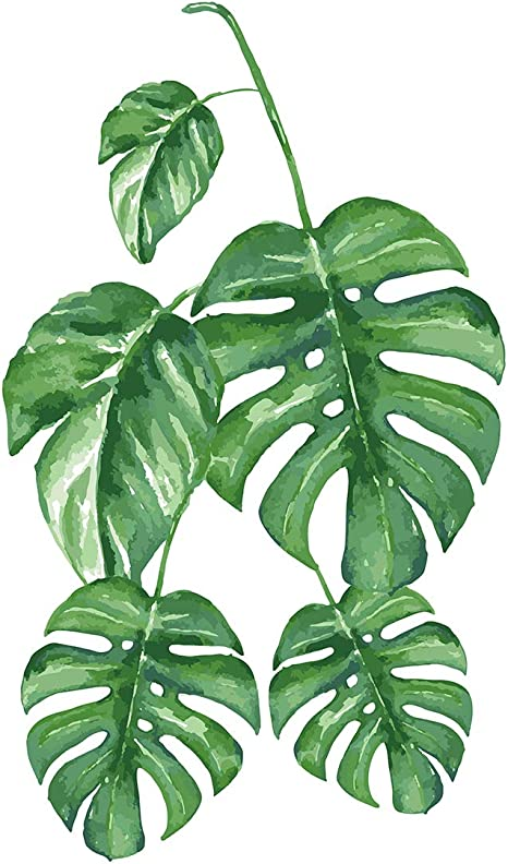 Plants on Luxe Black and White Adult Paint by Number Kit