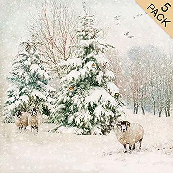 Designer Weihnachtskarten De.Designer Weihnachtskarten Ba0274 Tanne Schaf Pack Von 5 Karten