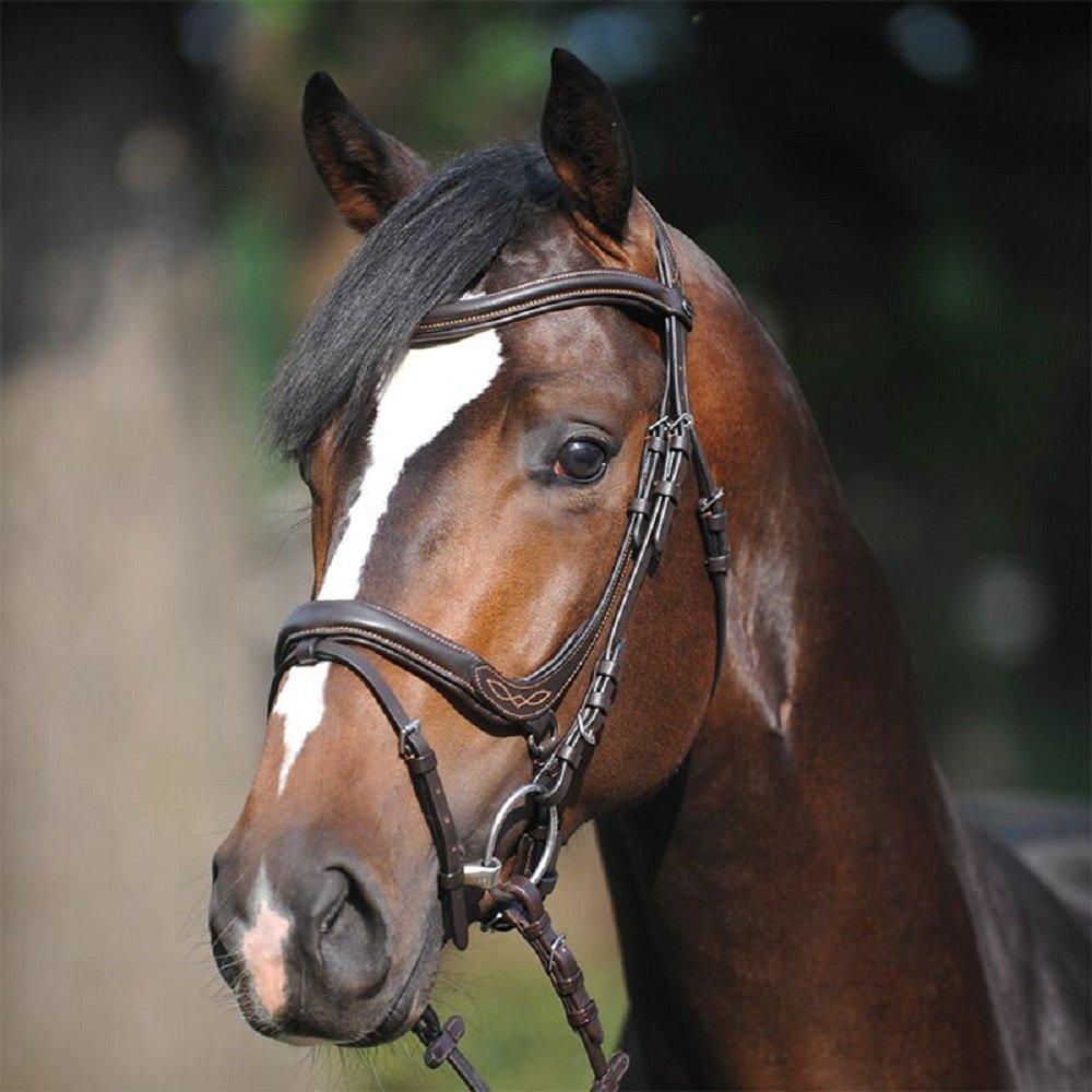 engl.-komb schwarz PII RH KAVALKADE Trense Ivy Lammfell Pony gro/ß schwarz