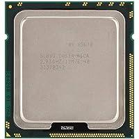 Diyeeni Processore Xeon X5670 (Socket: LGA 1366, 6 Core, DDR3-800/1066/1333, ECC, Cache da 12 MB) CPU per X58, Scheda Madre Serie X79, processo di Produzione 12nm
