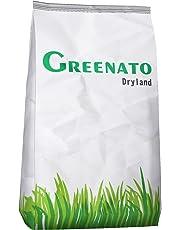 Rasensamen Greenato Dryland dürreresistenter Rasen Grassamen Rasensaat Gras Grassaat