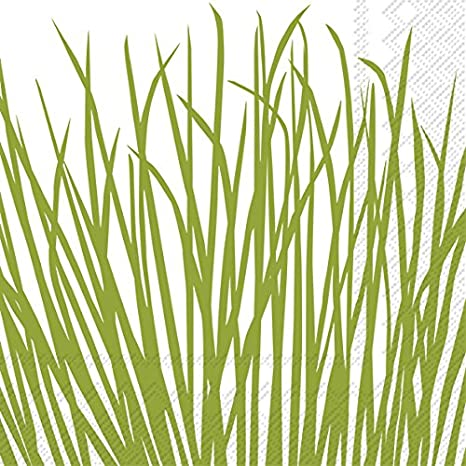 20 Count BOSTON INTERNATIONAL C737100 Seagrass Celebrate the Home Kate Nelligan 3-Ply Paper Cocktail Napkins