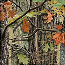 Creative Converting 18 Count Hunting Camo Beverage Napkins, Brown/Green