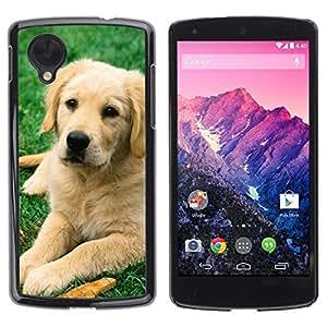 Be Good Phone Accessory // Dura Cáscara cubierta Protectora Caso Carcasa Funda de Protección para LG Google Nexus 5 D820 D821 // Labrador Retriever Golden Dog Puppy