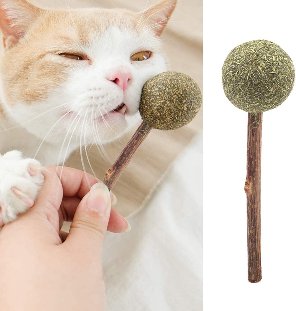 Cat Dental Chews Catnip Lollipop Catnip Toys for Cat Teeth Cleaning Playing Relaxing Catnip Toys Ryoizen Natural Catnip Sticks Mint Ball