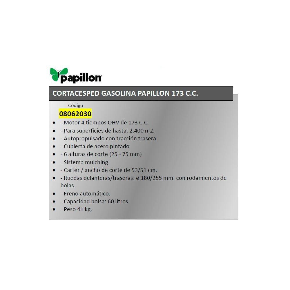 Cortacesped Gasolina Papillon 173 cm³ Autopropulsado: Amazon.es ...