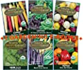 """Festive Organic Heirloom Blends""/ 6 Packets - Have Fun Adding Some Color to Your Veggie Garden!!! By BBB Seed"