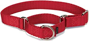 PetSafe Martingale Dog Collar, Alternative to Choke Collar