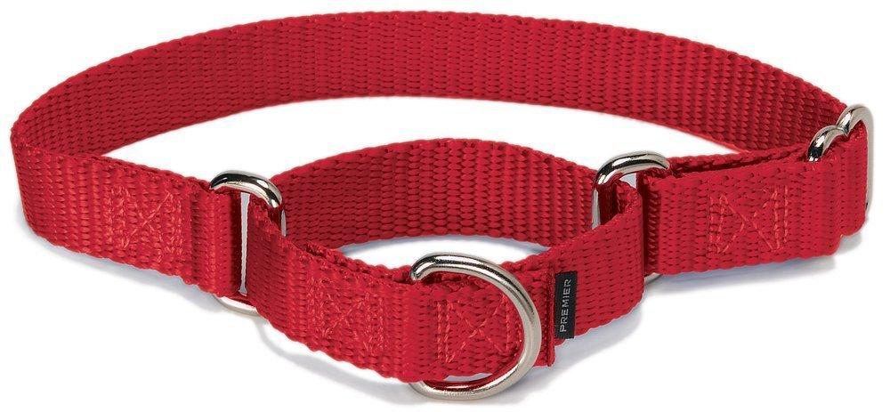 PetSafe Petite Martingale Collar RED LARGE (NYLON WIDTH 1