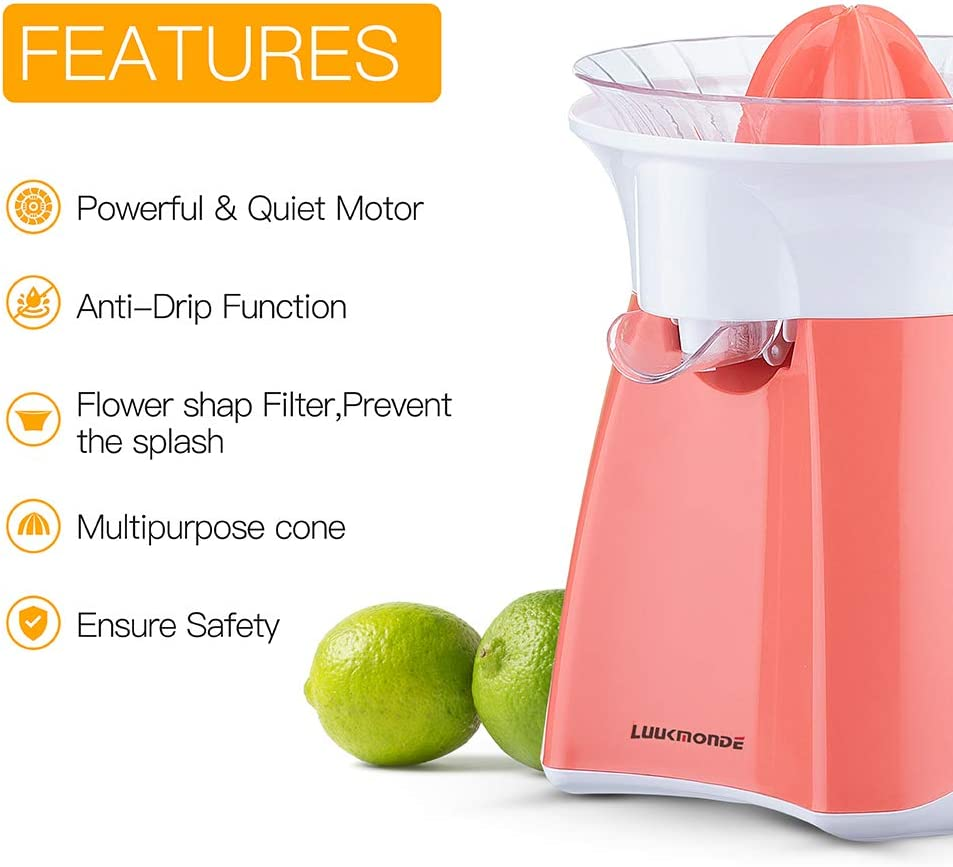small electric juicer