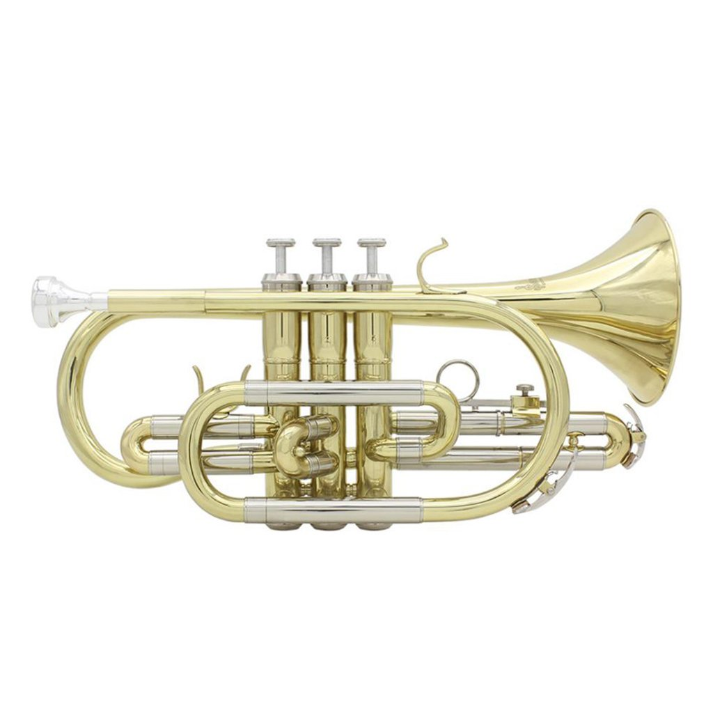 D DOLITY Brass Bb Flat Cornet with Carrying Case, Gloves, Cleaning Brush, Cloth, Grease by D DOLITY (Image #8)
