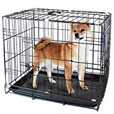 Folding Metal Pet Crate with Removable Liner by Weebo Pets (L - 36'' x 22'' x 25'' Dual Door)