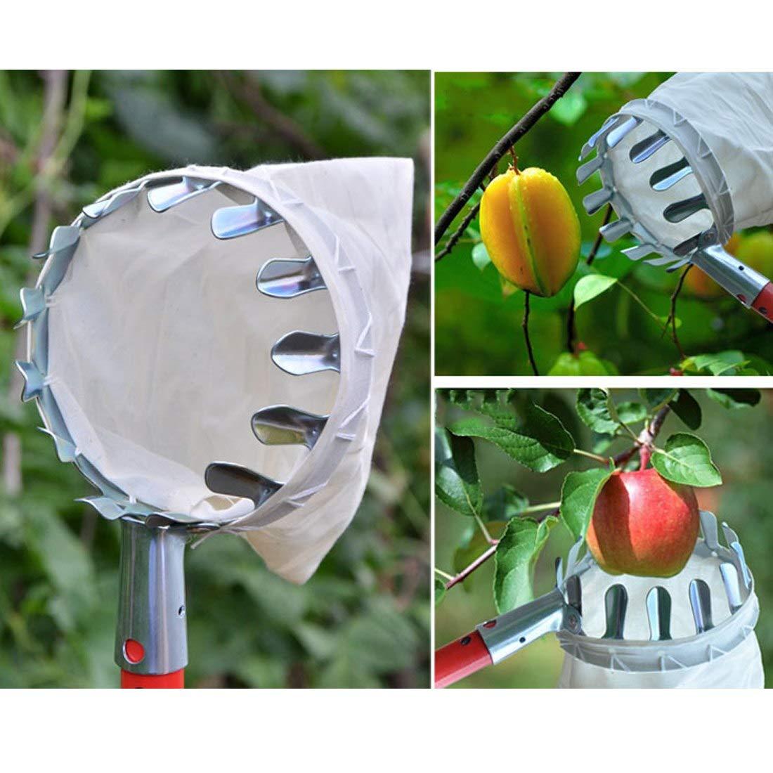 Cueilleur de Fruits Cueille-Fruits Avec Couronne /à Rev/êtement Convient pour Le Jardinage 1pcs