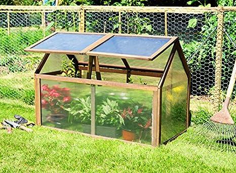 Mini -Invernadero Estilo Cofre – de Madera Lacewing: Amazon.es: Jardín