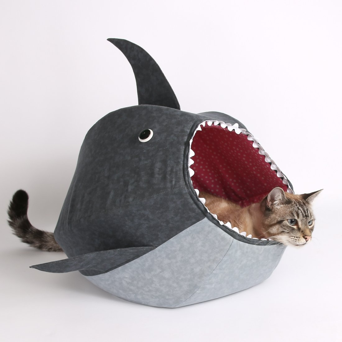 amazon com great white shark cat ball kitty bed pet supplies