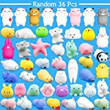 Toys : Mochi Mini Squishies, FLY2SKY 36 Pcs Random Mochi Animals Squishies Toys Soft Squeeze Toys Kawaii Squishy Cat Stress Reliever Anxiety Toys Panda Seal Polar Bear Fox Rabbit Cat Claw and More Squishies