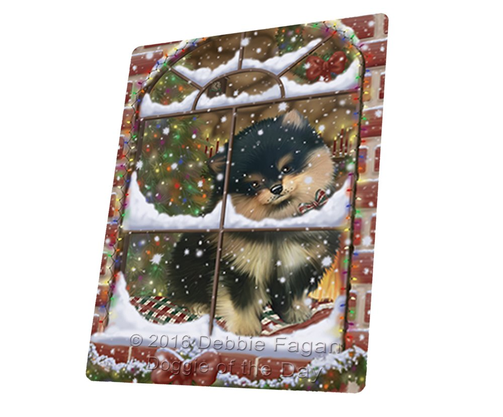 Please Come Home For Christmas Pomeranians Sitting In Window Art Portrait Print Woven Throw Sherpa Plush Fleece Blanket (60X80 Woven)